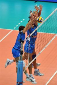 Famous Volleyball Players